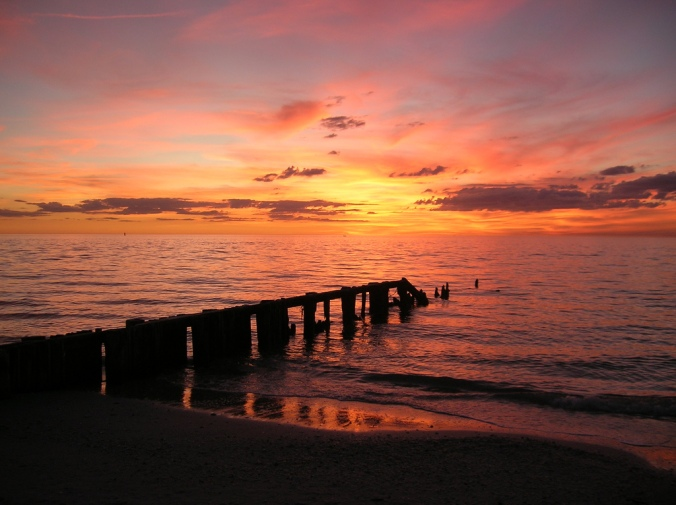 favorite sunset